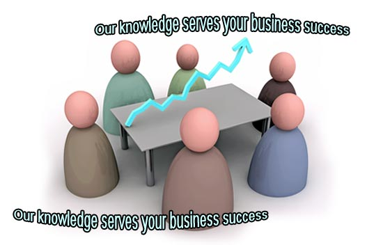 Business Consulting - Our knowledge serves your business success